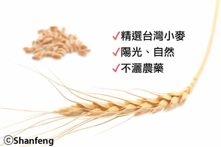 限量現貨-台灣小麥燒桶 - 16